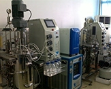全自动发酵装置
